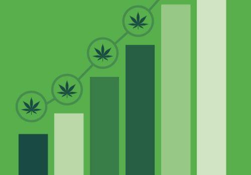 19-0807-Cannabis-Infographics-new-horizons-thumb