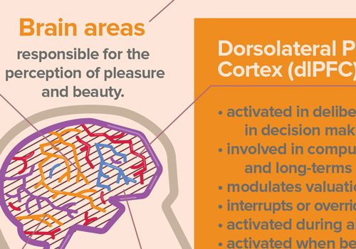 infographic-neuroaesthetics-thumb